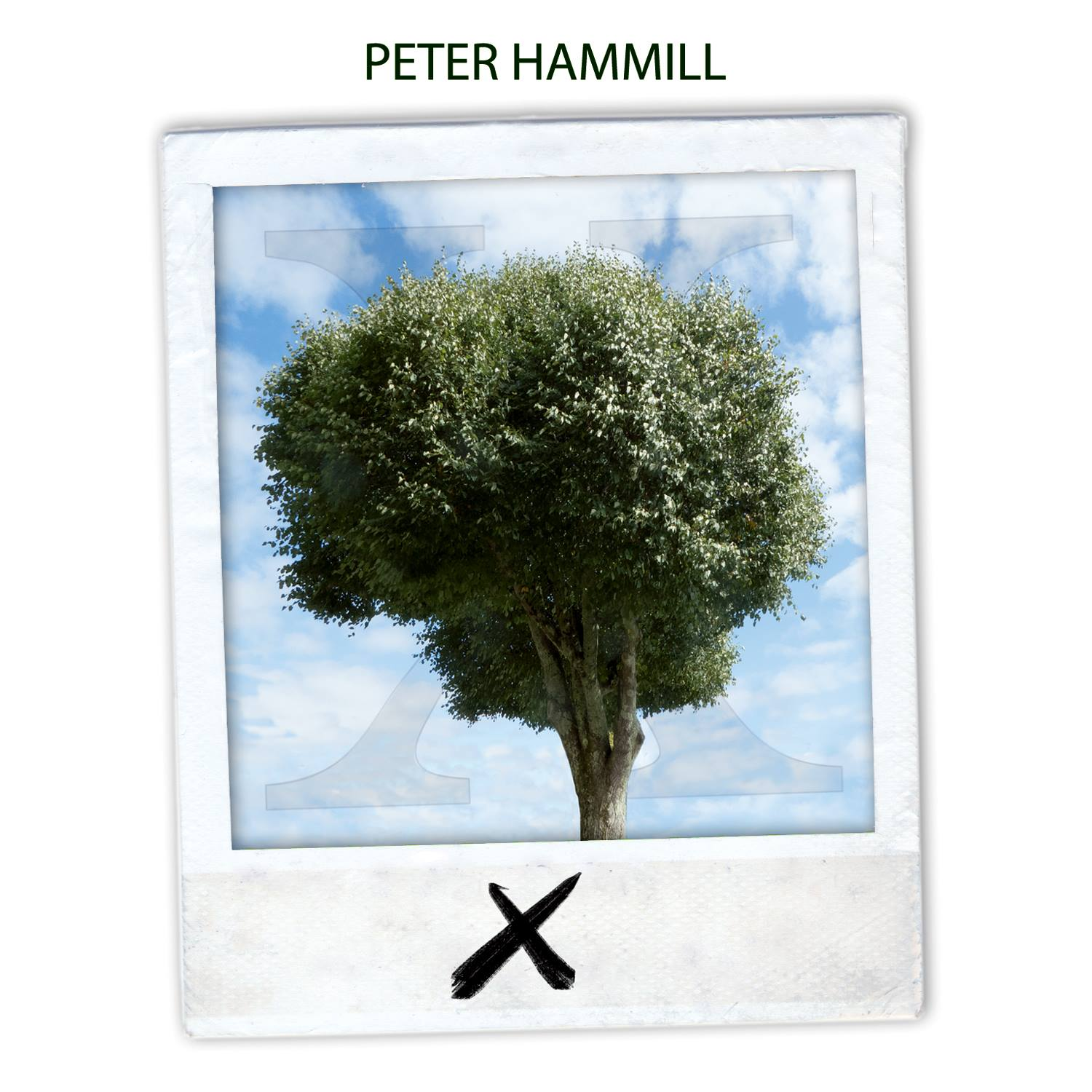 Peter Hammill - X/Ten